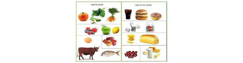 diète protéinée sachets